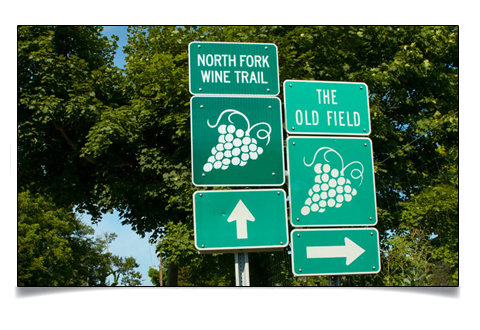 wine tours North Fork New York